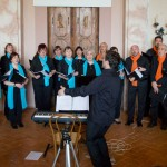 Coro, CantER, CantERgo Sum, Villa Ranuzzi Cospi, Budrio, Bagnarola di Budrio, Coro Gaudium, Ekos Vocal Ensemble, Accademia dei Notturni